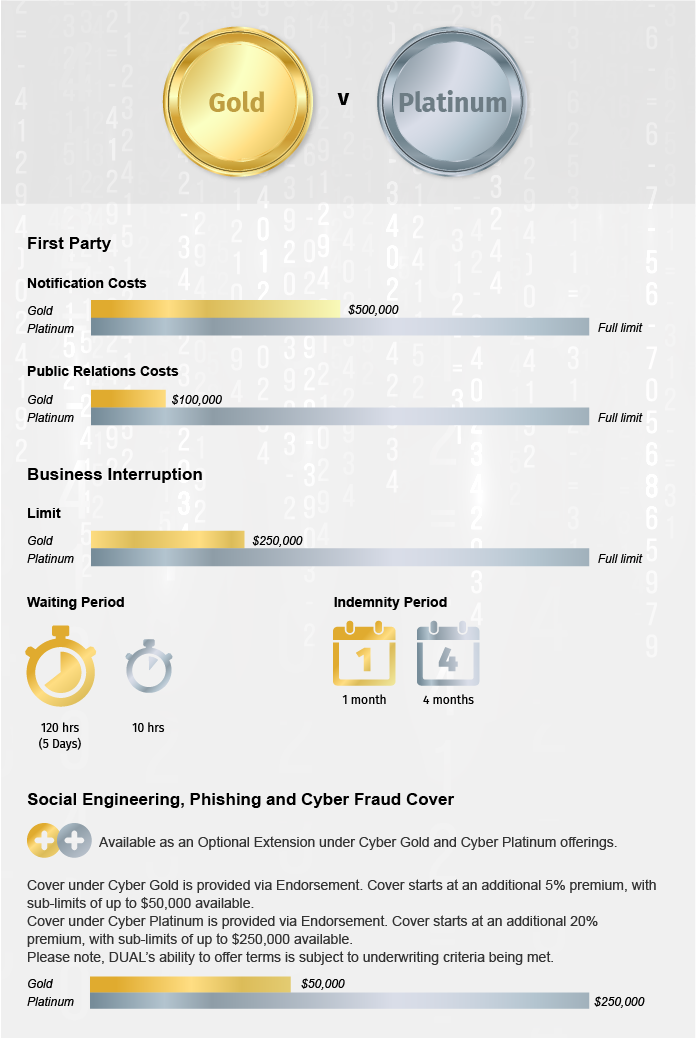 DUAL AU_What Are Our Cyber Offerings_Infographic 72ppi
